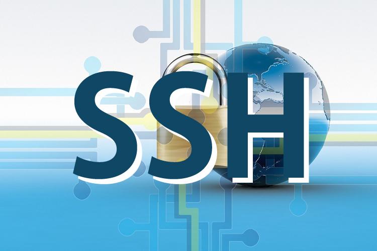 SSH接続方法はRLoginがおすすめ!FTPパーミッションが変更できない時はお試しを