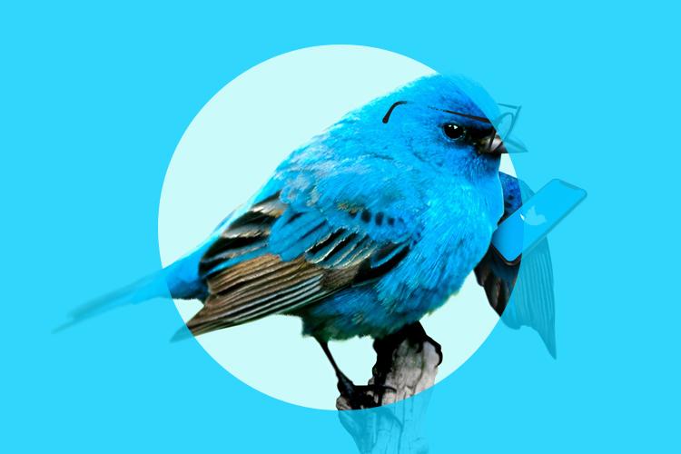 Twitterの大規模乗っ取りによるハッキング事件(Twitterシステム・社員の脆弱性)
